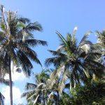 Langzeiturlaub auf Phuket, Thailand